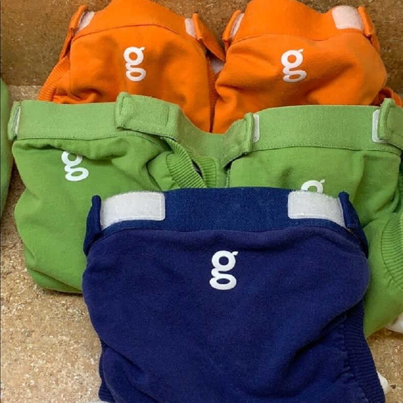 Gdiaper Review 8
