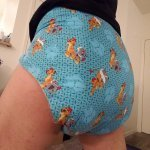 Adult Cloth Diaper 3